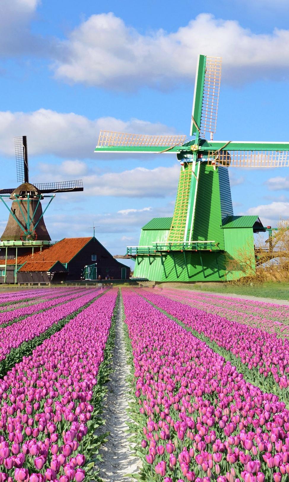 touristrunamsterdam windmill